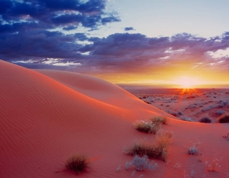 Simpson Desert Expedition
