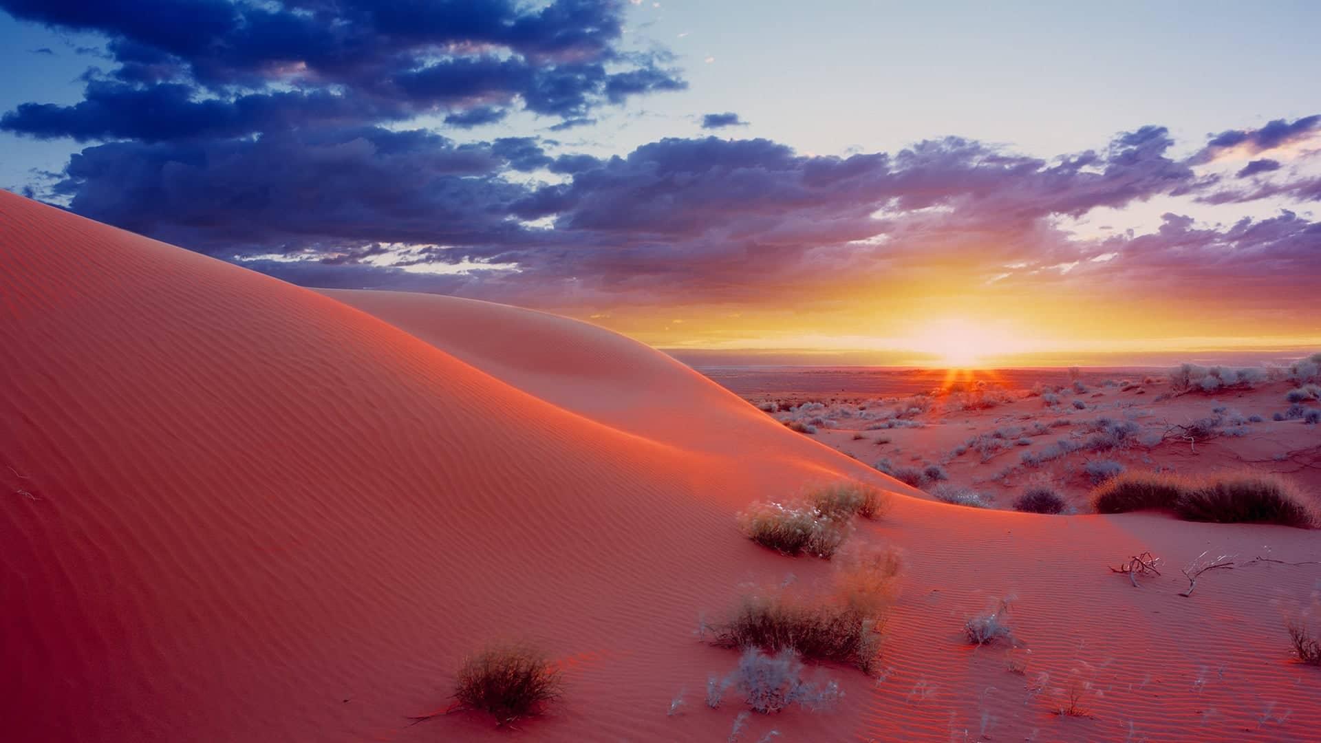 2020 Simpson Desert Tours Outback Spirit Tours