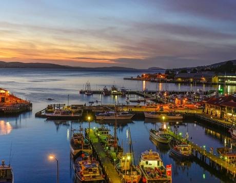 West Coast & Hobart Adventure